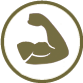 icon-immune-system